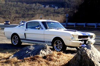Bold School: 1965 Ford Mustang Shelby GT350