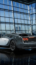 $3.5M Mansory Veyron start-up and driving sound [video]