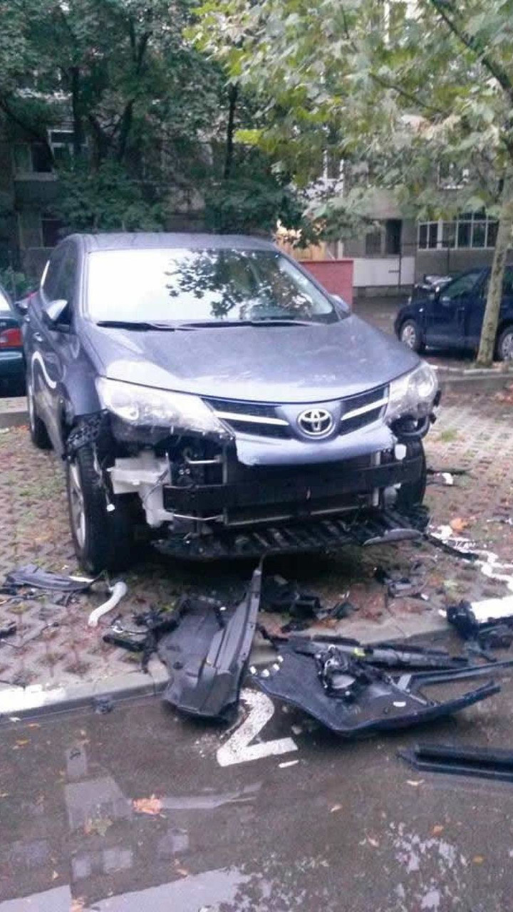 Toyota RAV4 damaged by dogs
