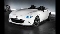 Mazda MX-5 Speedster Evolution 001