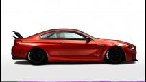 Risden BMW 6R