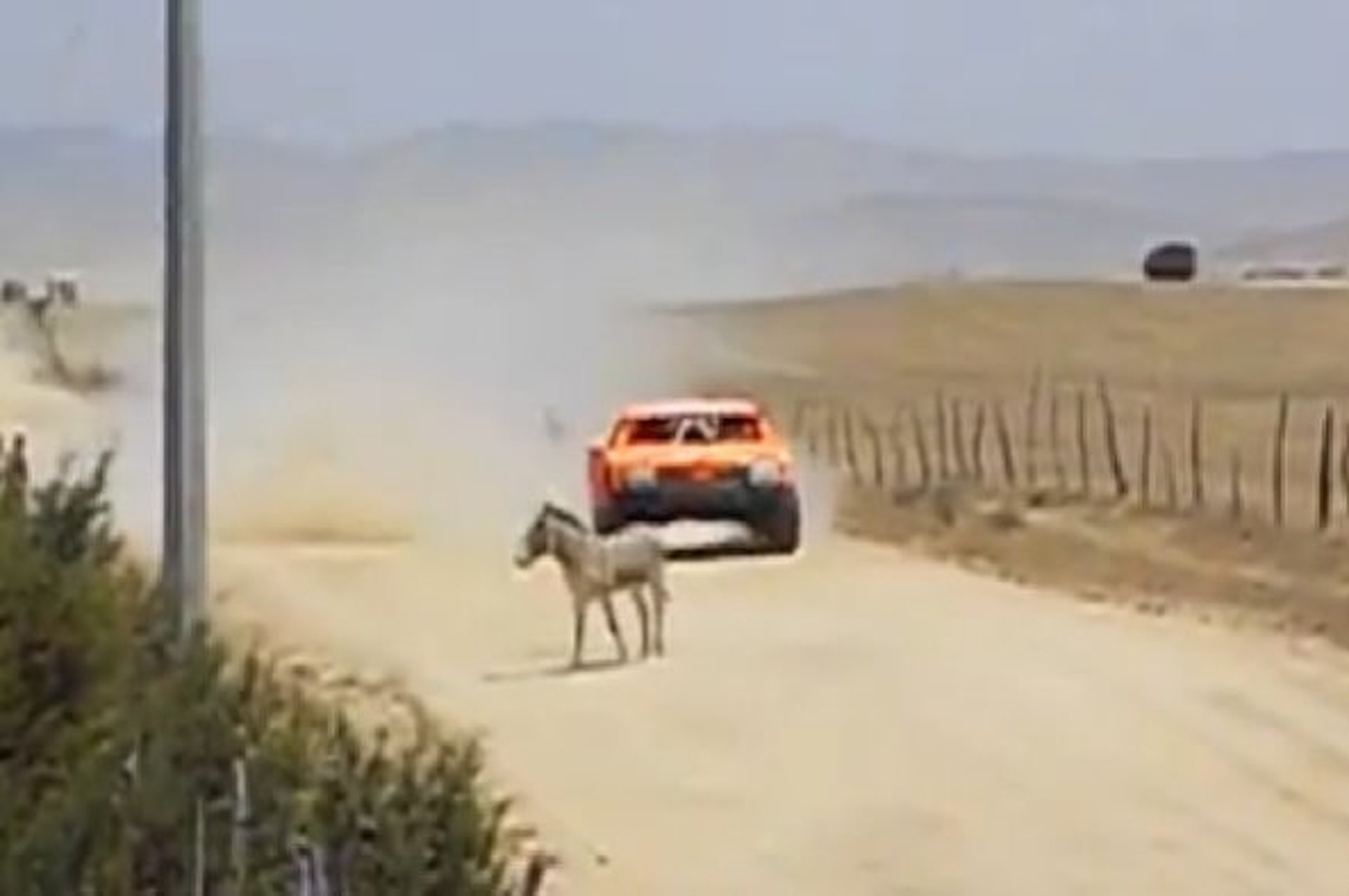 Watch Robby Gordon Nearly Hit a Donkey [video]