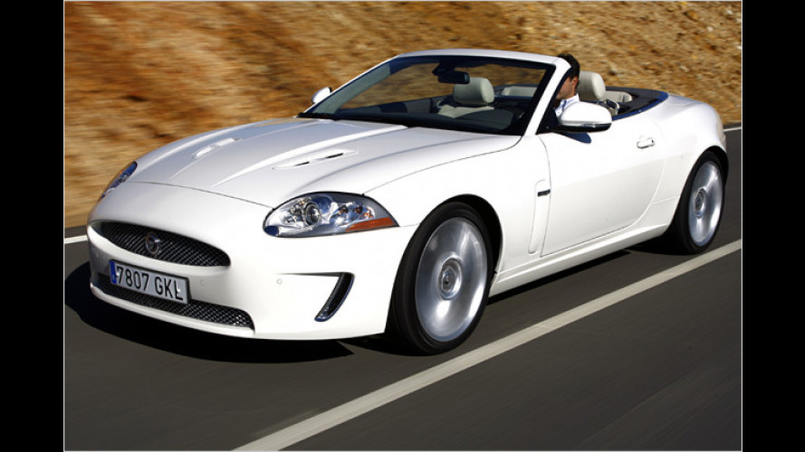 XKR Cabrio: Der Jaguar mit den zwei Gesichtern
