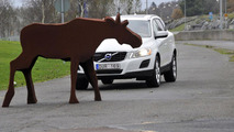 Volvo animal detection system 09.7.2012