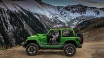 2018 Jeep Wrangler in Mojito! Clear Coat