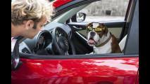 8 motivi per cui un SUV fa la differenza [VIDEO]