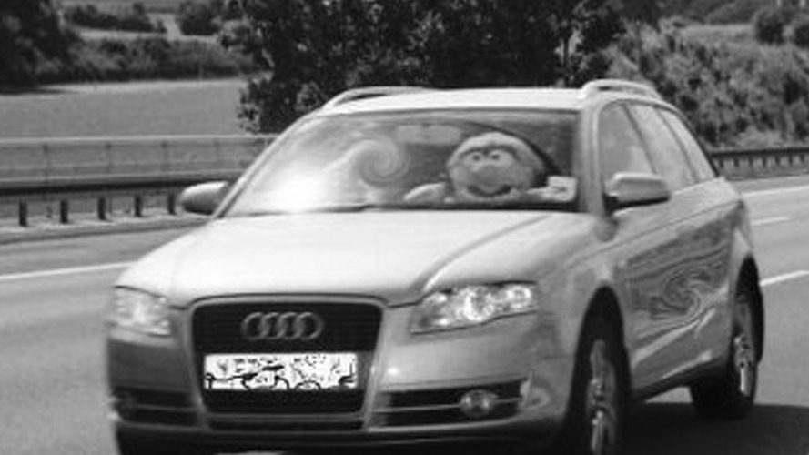 Speeding Muppet