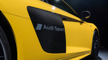 Audi Paint Etching Option