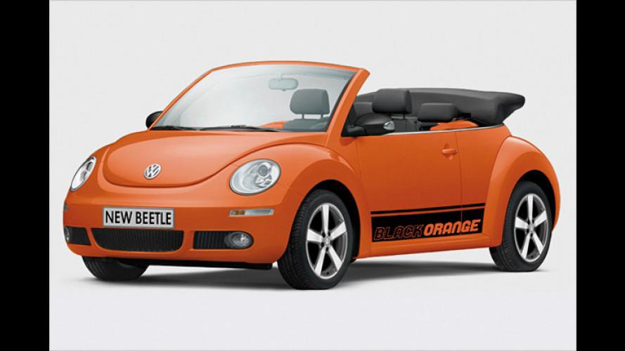 Volkswagen New Beetle BlackOrange: Ein toller Käfer