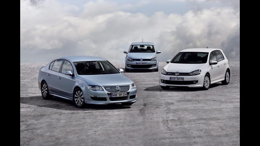 Gamma Volkswagen BlueMotion a Francoforte