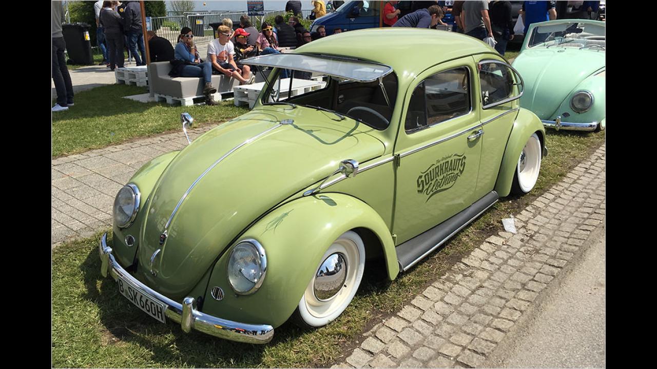 Dieser Käfer ist aus Berlin an den Wörthersee gekommen