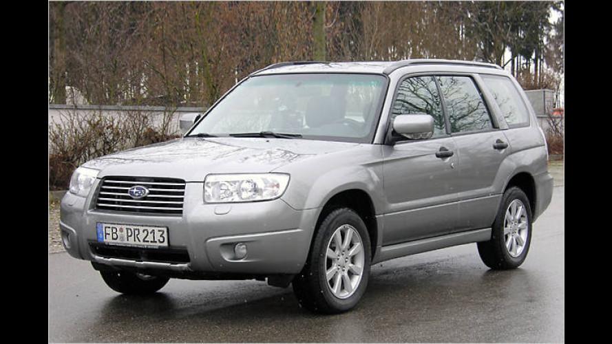 Zehn Jahre Kombi-SUV: Subaru Forester als Sondermodell