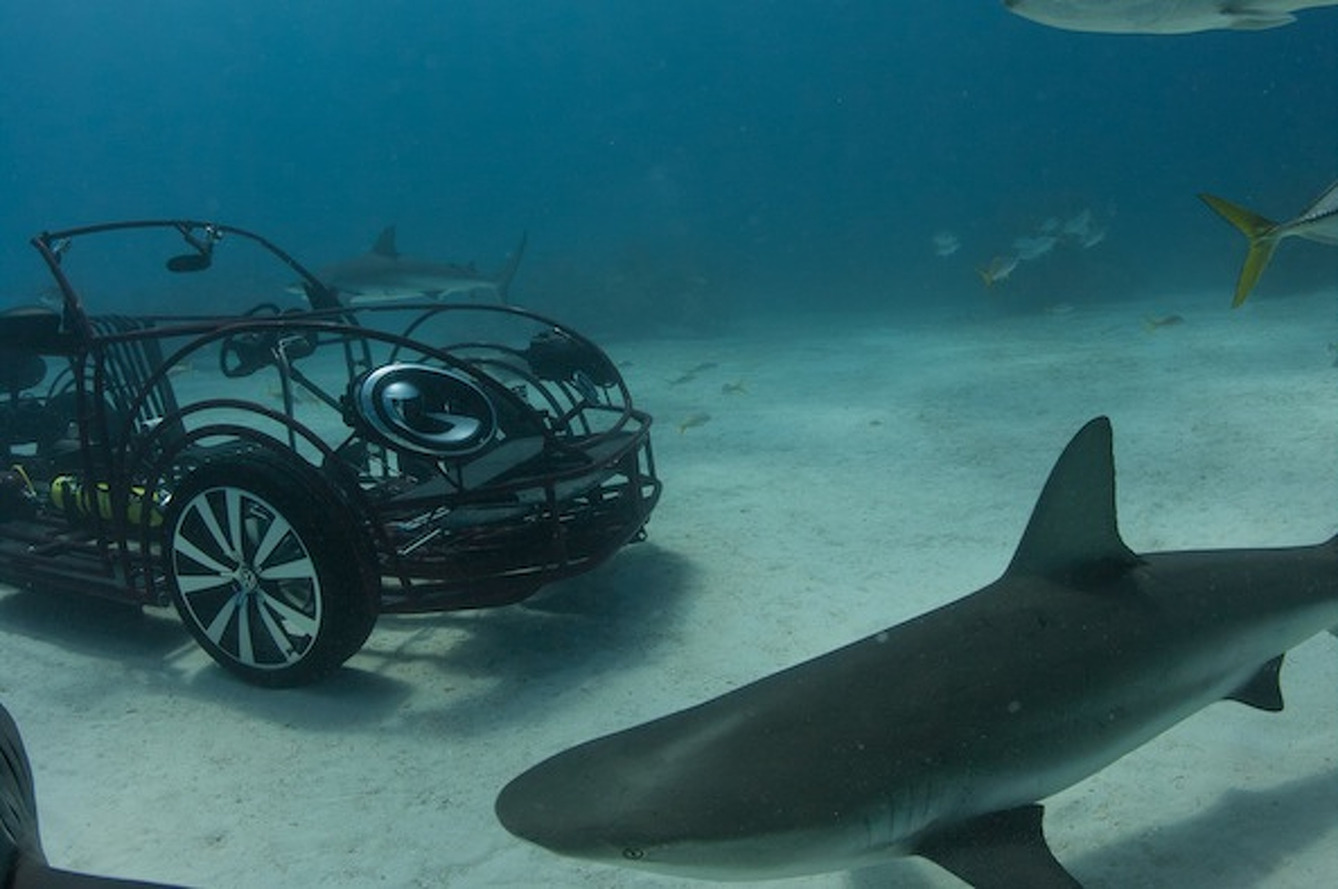Volkswagen Beetle Convertible Transformed into Shark Cage