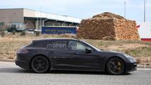 Porsche Panamera Shooting Brake poses for the camera