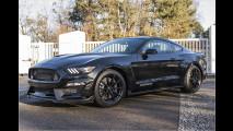 Der Mega-Mustang kommt zu uns