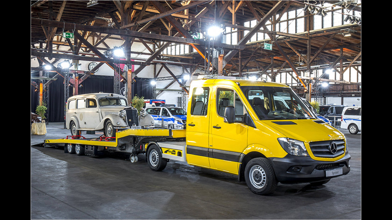 Fahrzeugtransporter von FGS