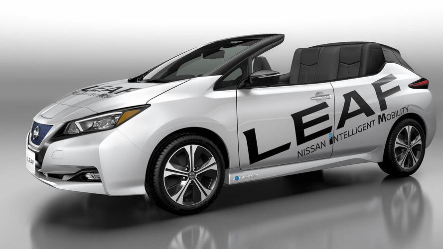 Nissan Leaf Open Car