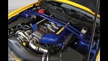 Ford Mustang WD-40 SEMA