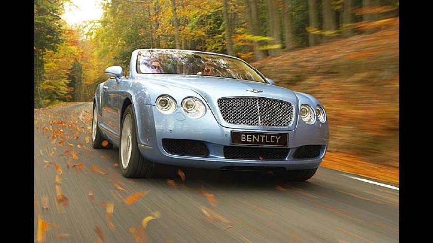 Frisch an die Luft gesetzt: Bentley Continental Cabrio