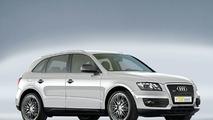 Audi Q5 by Emotion-Wheels and Digi-Tec