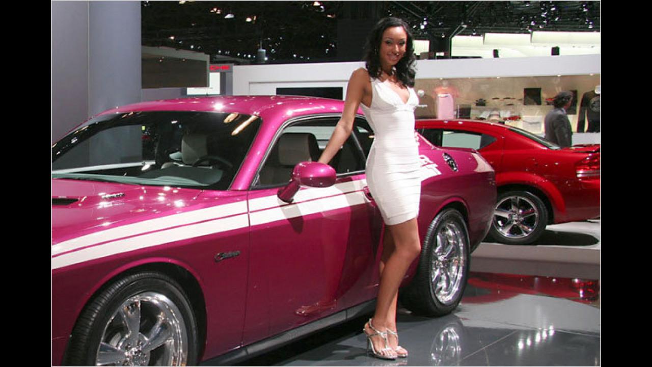 Schauen Sie mal, die heißen Muscle Cars ziehen immer noch die schönsten Mädels an