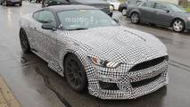 2019 Ford Mustang Shelby GT500 Casus Fotoğraflar