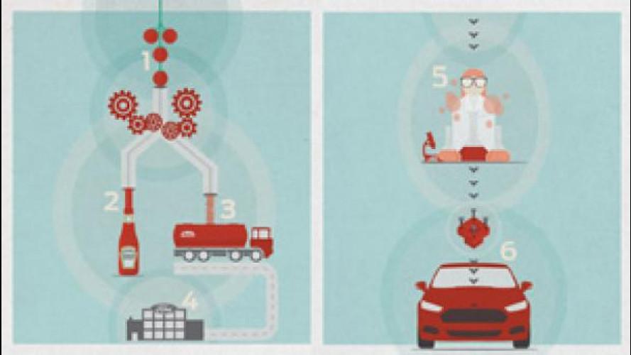 Pomodori a pezzi nelle auto del futuro