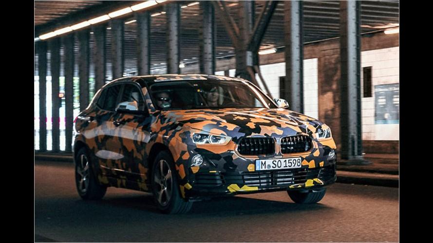 BMW X2: Der neue Dschungel-König?