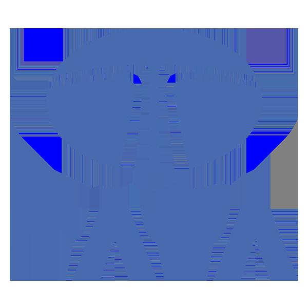 2012 Tata Aria